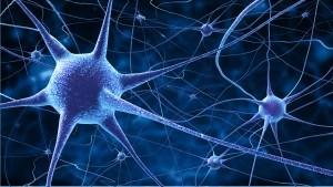 Nervenzellen in blauer Farbe