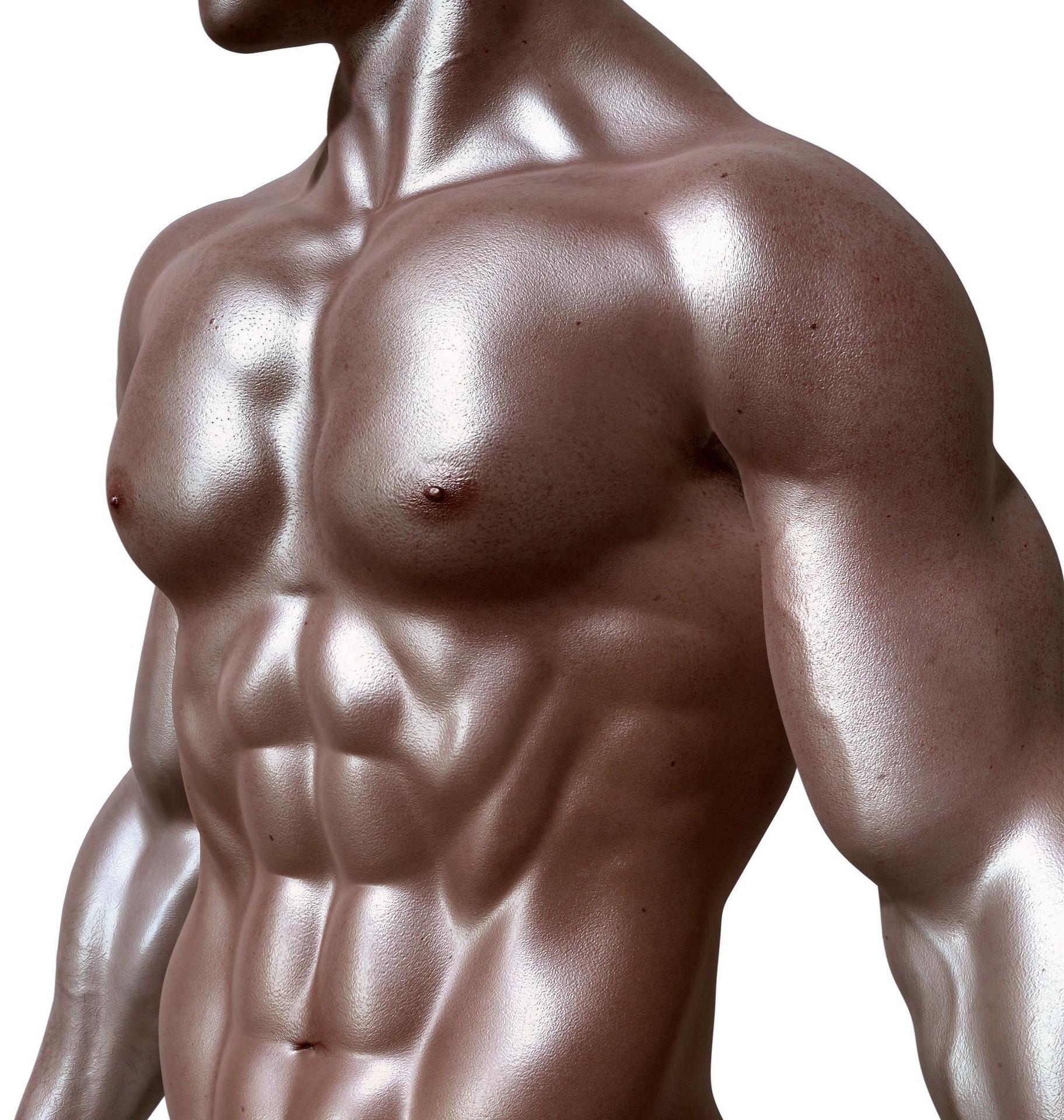 Das Klimmzugtraining beansprucht verschiedenen Muskelgruppen