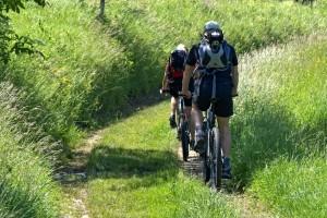 Mit dem Fahrrad in der Natur unterwegs.