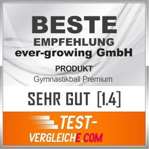 """Der Gymanstikball von Sportastisch wurde von test-vergleiche.com mit """"Sehr gut"""" ausgezeichnet."""